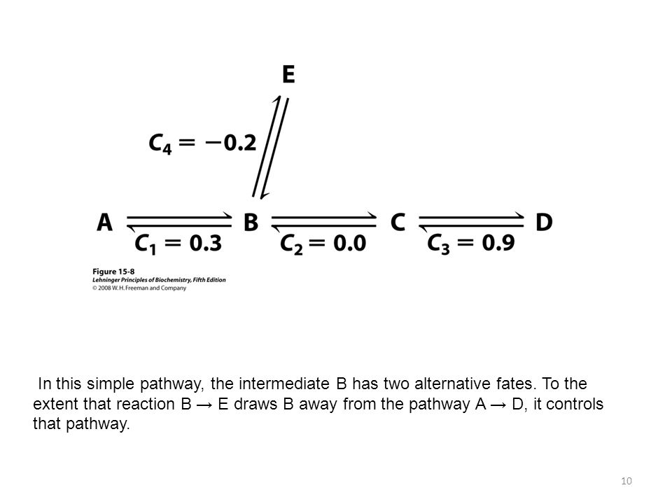 10 In this simple pathway, the intermediate B has two alternative fates. To the extent that reaction B E draws B away from the pathway A D, it control