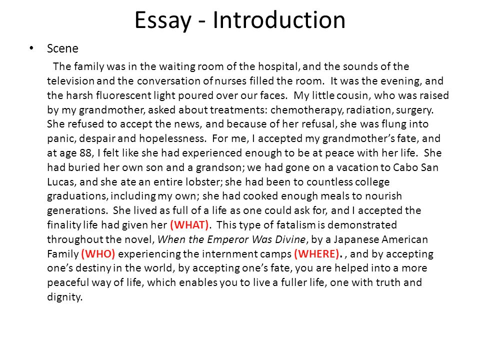Essay - Introduction Scene The family was in the waiting room of the hospital, and the sounds of the television and the conversation of nurses filled