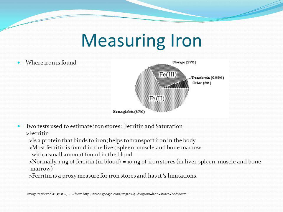 Measuring Iron Where iron is found Two tests used to estimate iron stores: Ferritin and Saturation >Ferritin >Is a protein that binds to iron; helps t