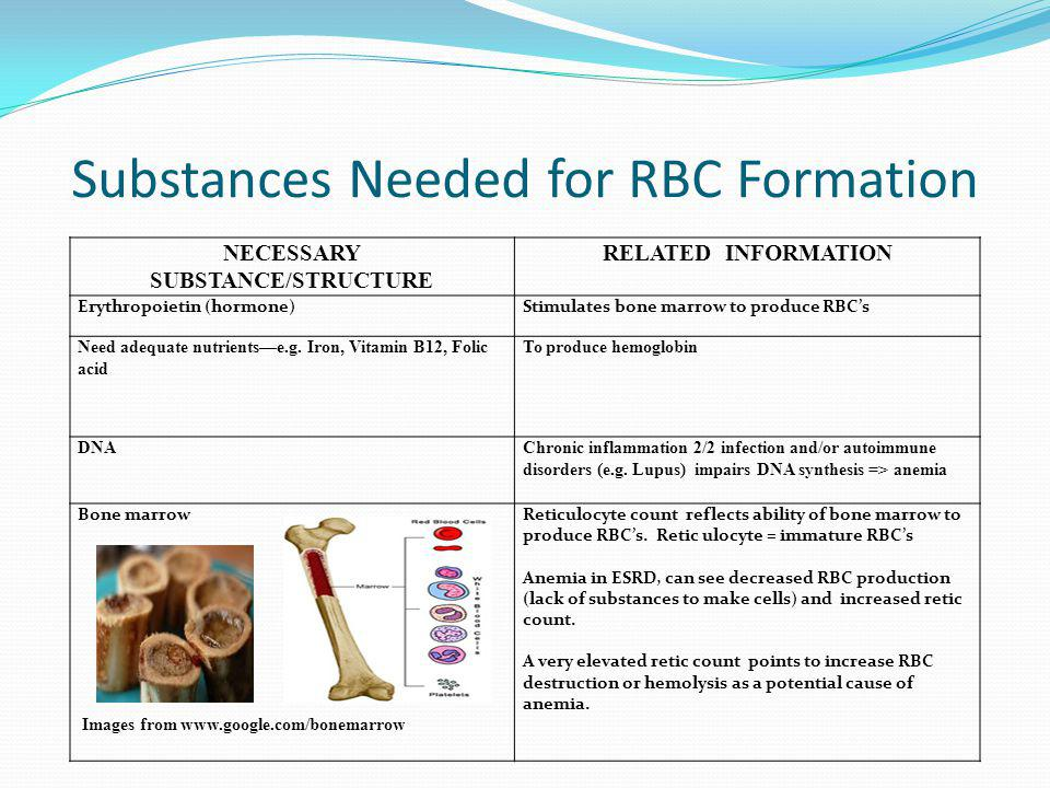 Substances Needed for RBC Formation NECESSARY SUBSTANCE/STRUCTURE RELATED INFORMATION Erythropoietin (hormone)Stimulates bone marrow to produce RBCs N
