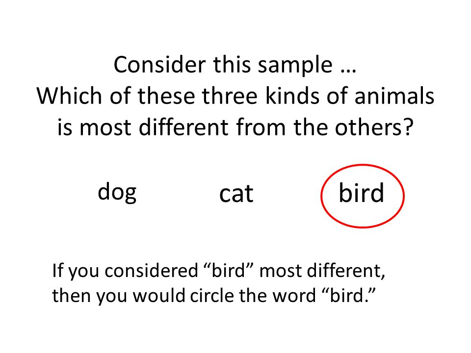 Consider this sample … Which of these three kinds of animals is most different from the others? dog catbird If you considered bird most different, the