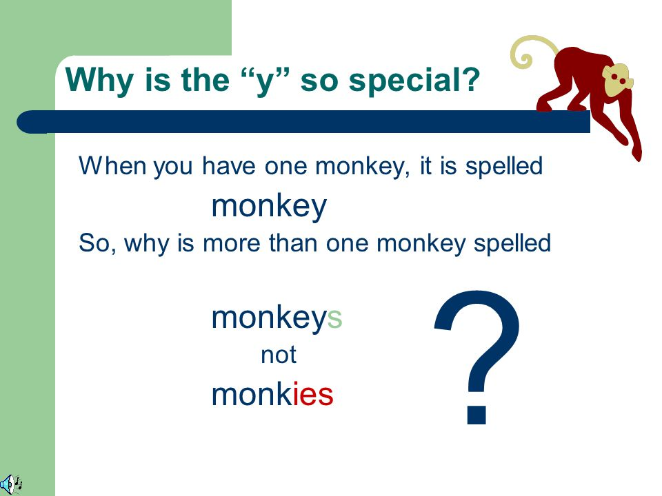 Pluralizing nouns ending in y When a Monkey becomes Monkeys!