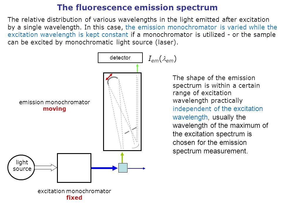 The fluorescence emission spectrum The relative distribution of various wavelengths in the light emitted after excitation by a single wavelength.