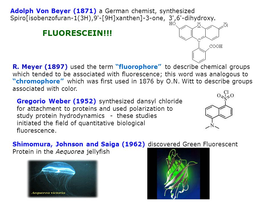 R. Meyer (1897) used the term fluorophore to describe chemical groups which tended to be associated with fluorescence; this word was analogous to chro
