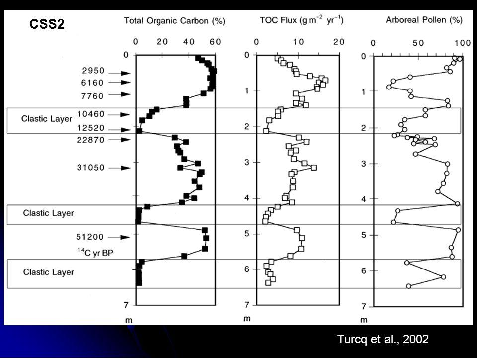 Turcq et al., 2002 CSS2