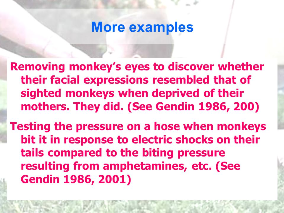 More examples Removing monkeys eyes to discover whether their facial expressions resembled that of sighted monkeys when deprived of their mothers.