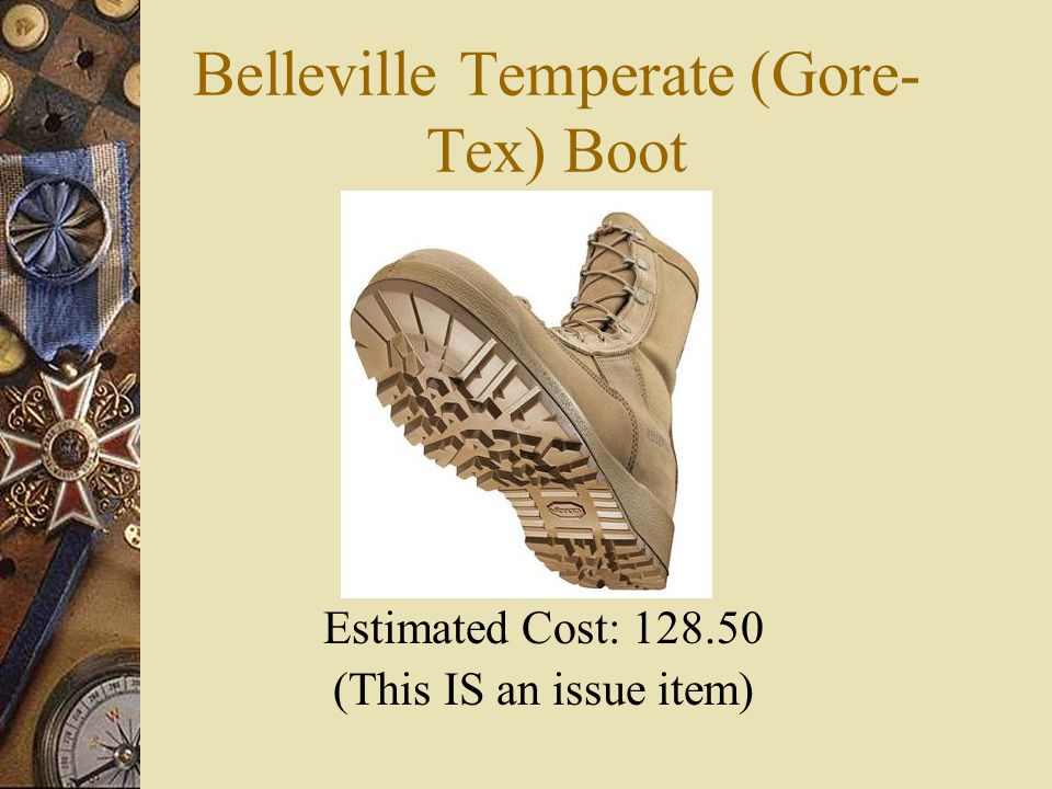 Belleville Temperate (Gore- Tex) Boot Estimated Cost: 128.50 (This IS an issue item)