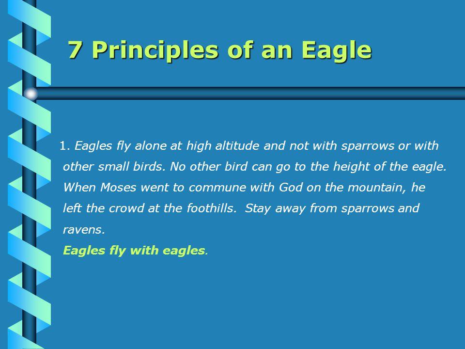 7 Principles of an Eagle 1.