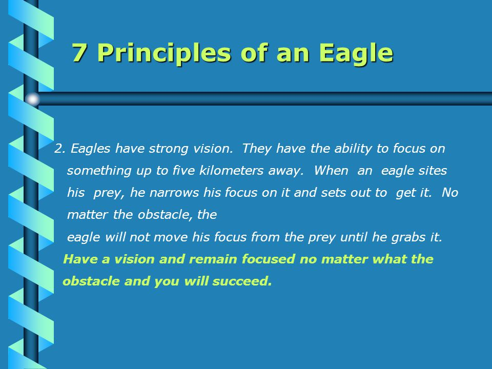 7 Principles of an Eagle 3.Eagles do not eat dead things.