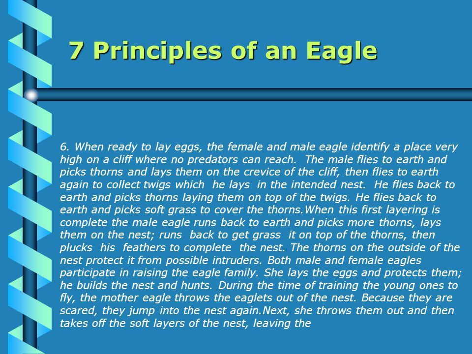 6.the thorns bare. When the scared eaglets again jump into the nest, they are pricked by thorns.