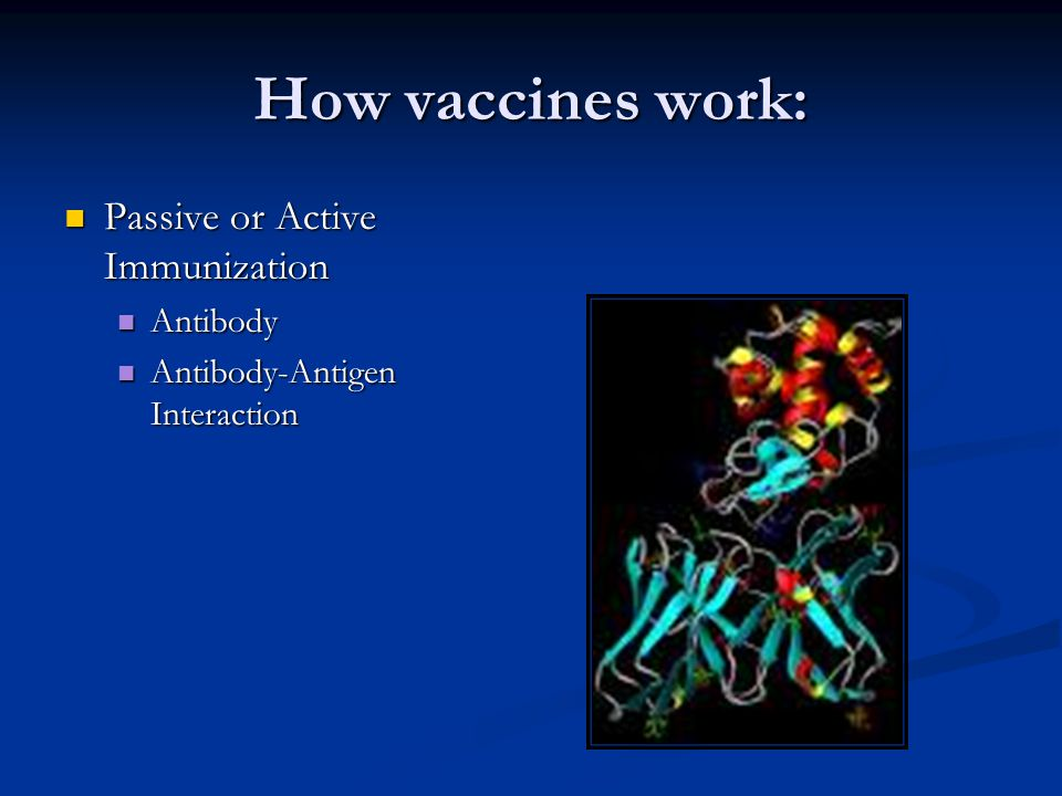 How vaccines work: Passive or Active Immunization Passive or Active Immunization Antibody Antibody Antibody-Antigen Interaction Antibody-Antigen Interaction
