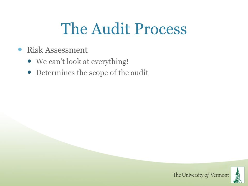 The Audit Process Risk Assessment We cant look at everything! Determines the scope of the audit