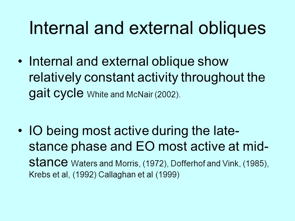 Internal and external obliques Internal and external oblique show relatively constant activity throughout the gait cycle White and McNair (2002).