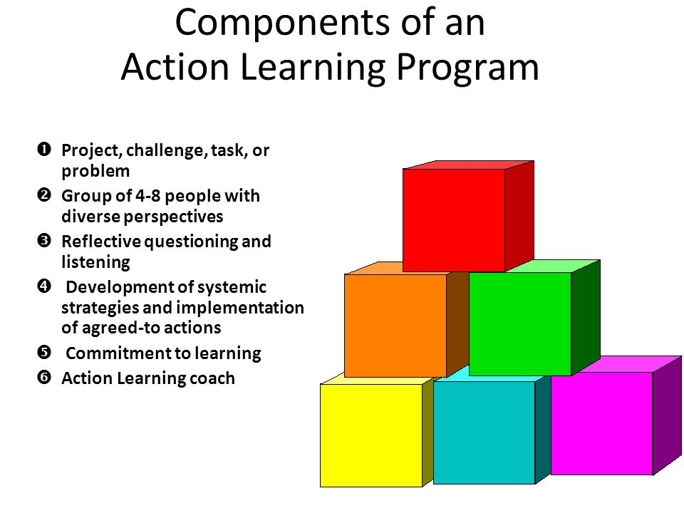 Components of an Action Learning Program Project, challenge, task, or problem Group of 4-8 people with diverse perspectives Reflective questioning and