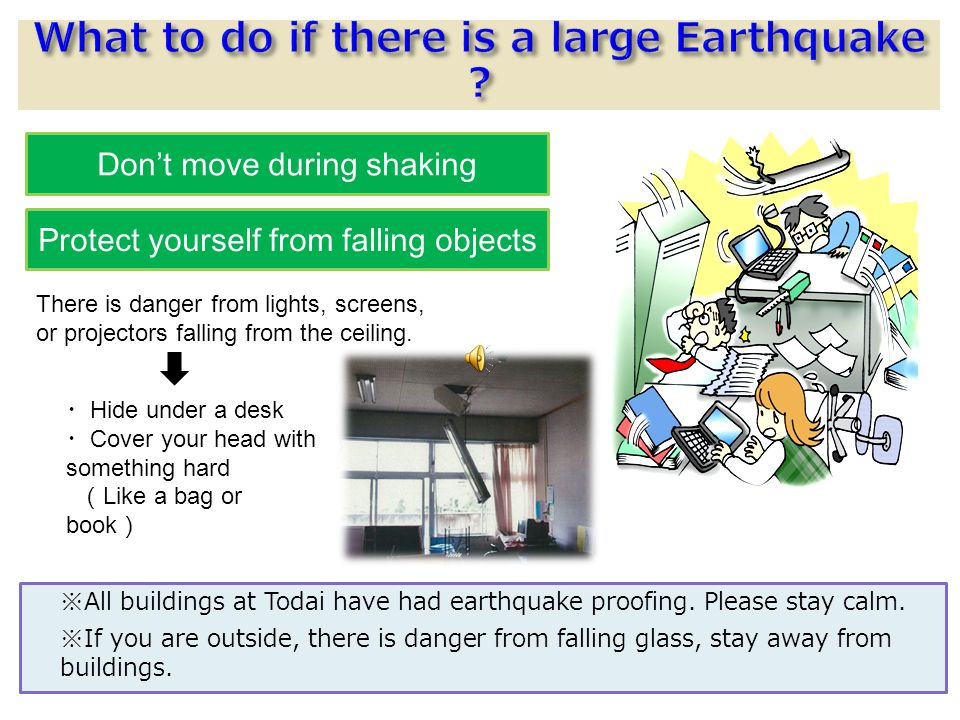 Dont move during shaking All buildings at Todai have had earthquake proofing.