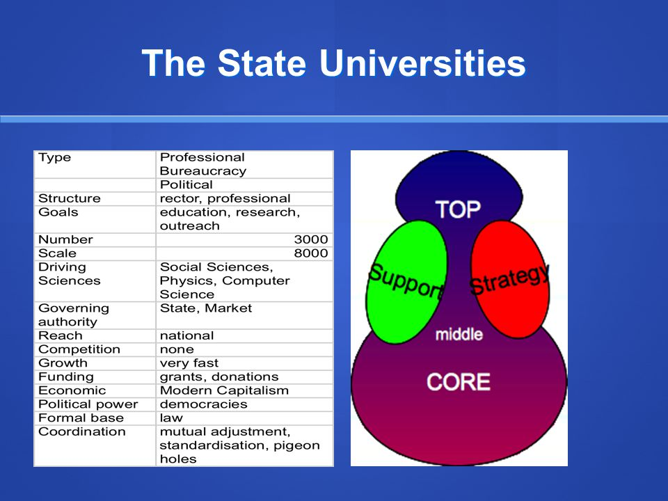 The State Universities