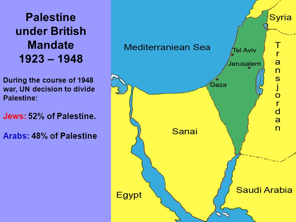 Palestine after 1948 War Palestinians were divided into 4 divisions: 1.Pals.