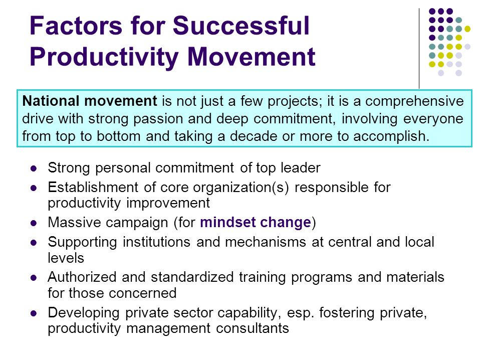 Factors for Successful Productivity Movement Strong personal commitment of top leader Establishment of core organization(s) responsible for productivity improvement Massive campaign (for mindset change) Supporting institutions and mechanisms at central and local levels Authorized and standardized training programs and materials for those concerned Developing private sector capability, esp.