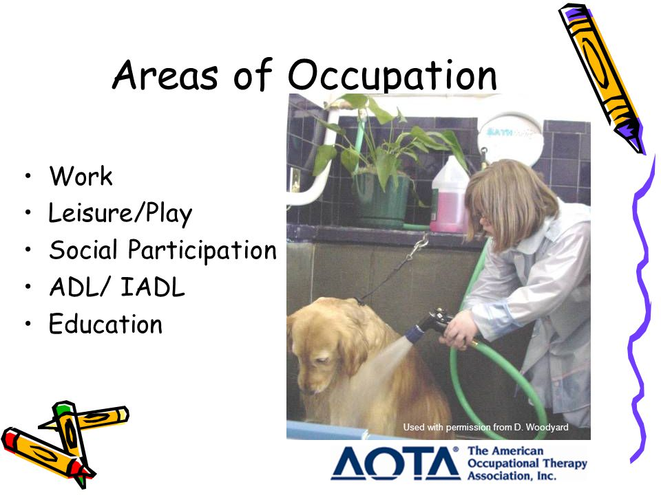 Areas of Occupation Work Leisure/Play Social Participation ADL/ IADL Education Used with permission from D.