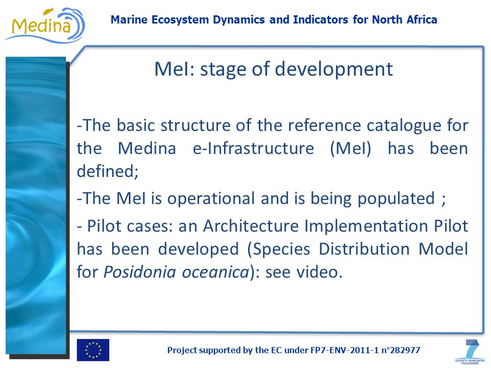 Project supported by the EC under FP7-ENV-2011-1 n°282977 Marine Ecosystem Dynamics and Indicators for North Africa -The basic structure of the reference catalogue for the Medina e-Infrastructure (MeI) has been defined; -The MeI is operational and is being populated ; - Pilot cases: an Architecture Implementation Pilot has been developed (Species Distribution Model for Posidonia oceanica): see video.