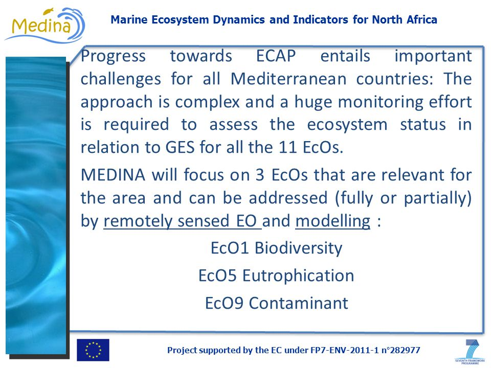 Project supported by the EC under FP7-ENV-2011-1 n°282977 Marine Ecosystem Dynamics and Indicators for North Africa Progress towards ECAP entails important challenges for all Mediterranean countries: The approach is complex and a huge monitoring effort is required to assess the ecosystem status in relation to GES for all the 11 EcOs.