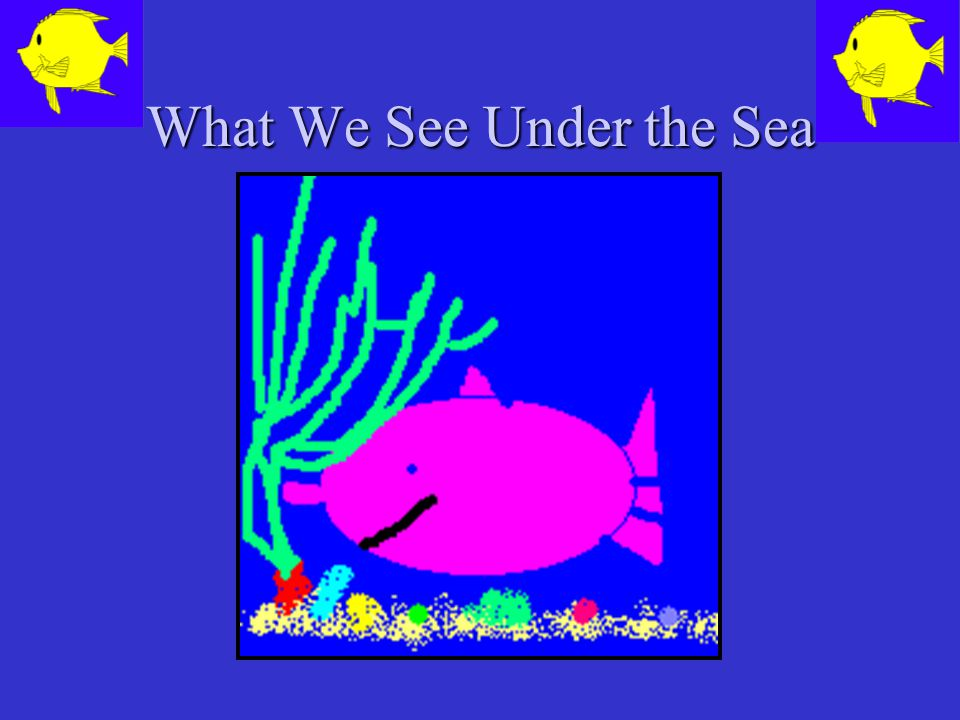 What We See Under the Sea