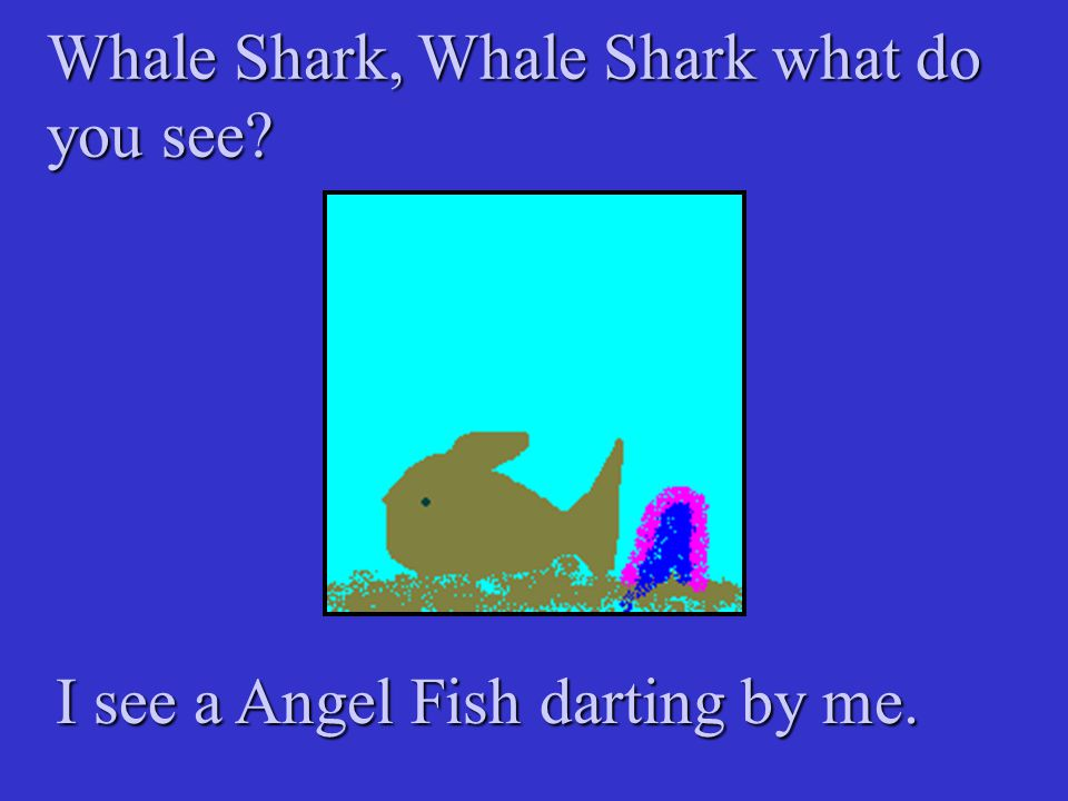 Whale Shark, Whale Shark what do you see? I see a Angel Fish darting by me.