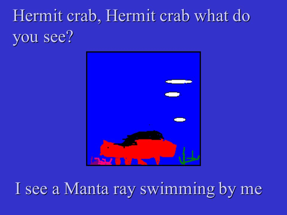 Hermit crab, Hermit crab what do you see? I see a Manta ray swimming by me