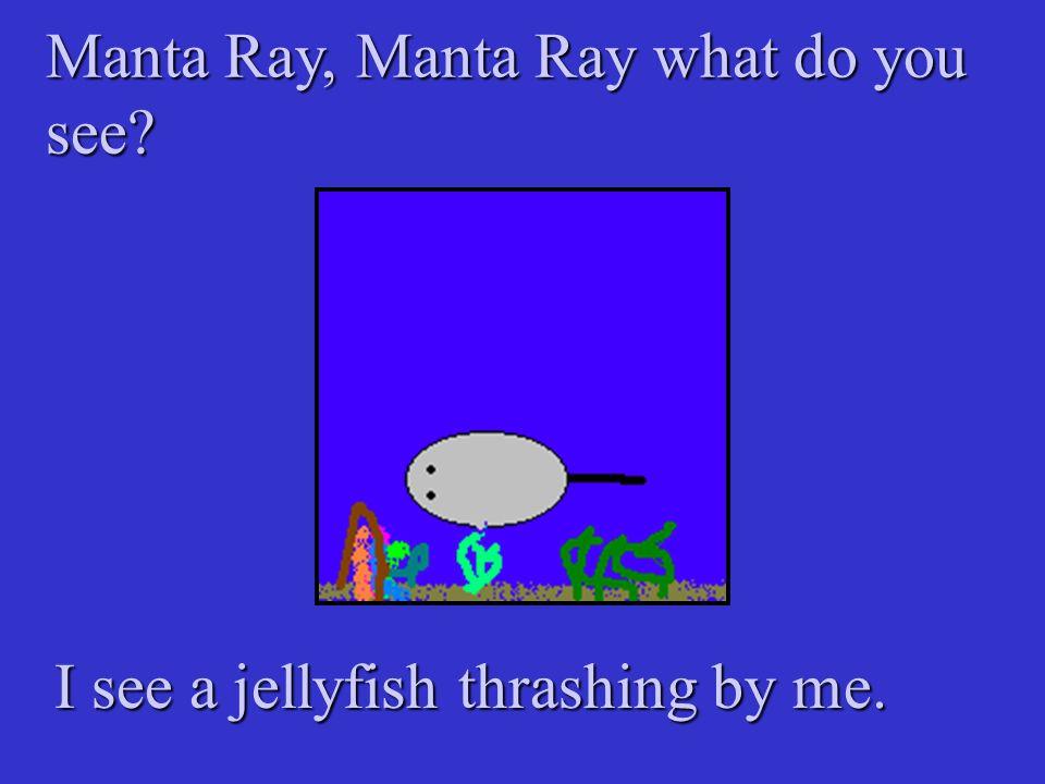 Manta Ray, Manta Ray what do you see? I see a jellyfish thrashing by me.