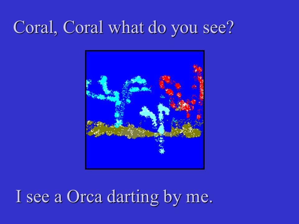 Coral, Coral what do you see? I see a Orca darting by me.