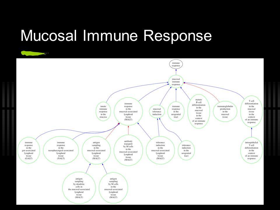 Mucosal Immune Response