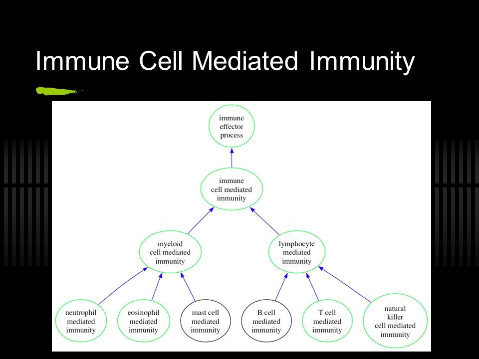 Immune Cell Mediated Immunity