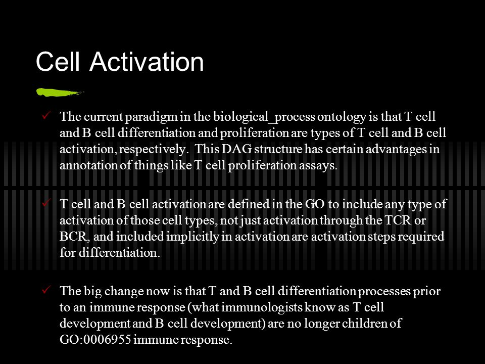 Cell Activation The current paradigm in the biological_process ontology is that T cell and B cell differentiation and proliferation are types of T cell and B cell activation, respectively.