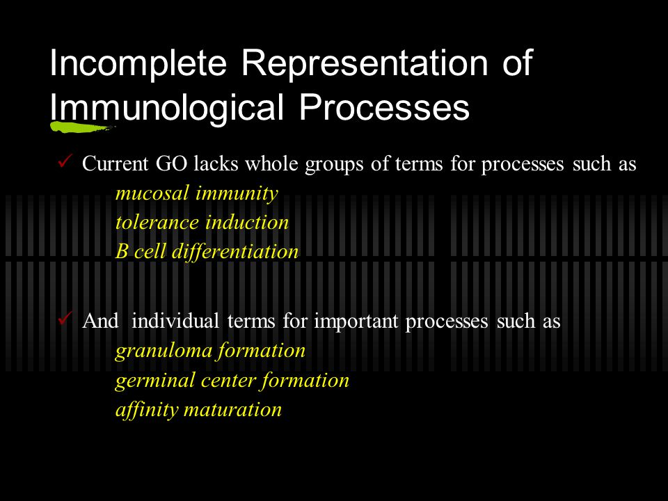Incomplete Representation of Immunological Processes Current GO lacks whole groups of terms for processes such as mucosal immunity tolerance induction B cell differentiation And individual terms for important processes such as granuloma formation germinal center formation affinity maturation
