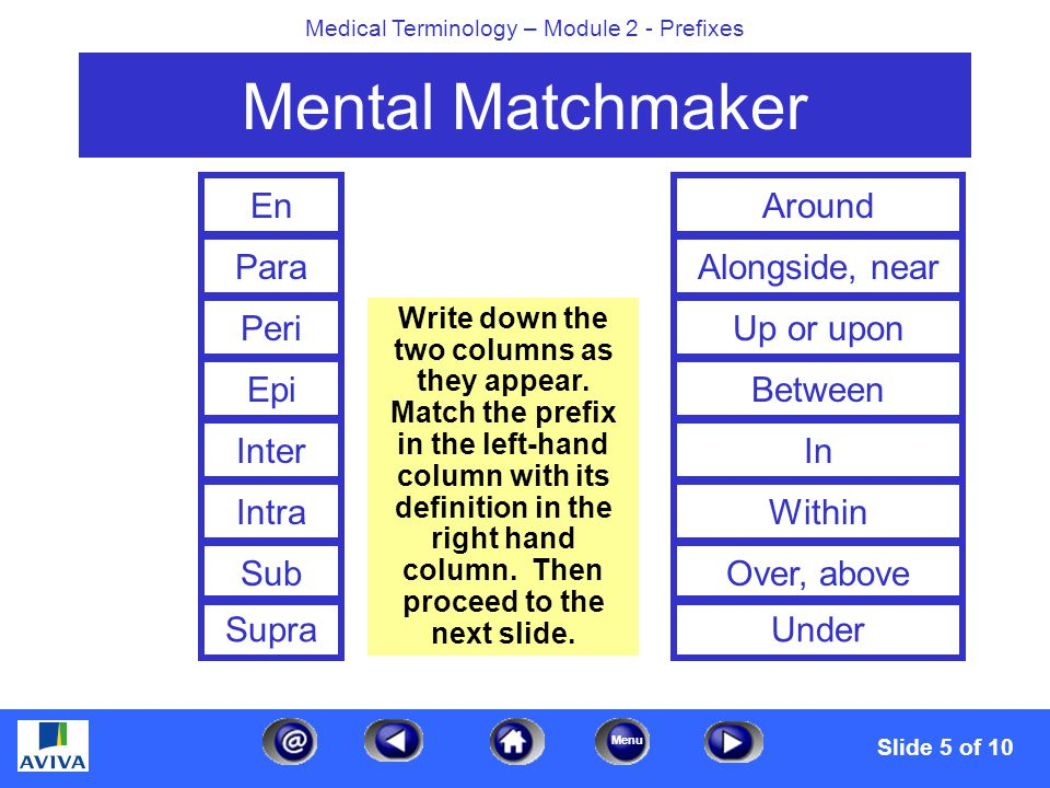 Menu Medical Terminology – Module 2 - Prefixes Mental Matchmaker En Para Peri Epi Inter Intra Sub Supra Around Alongside, near On or upon Between In Within Over, above Under Slide 6 of 10