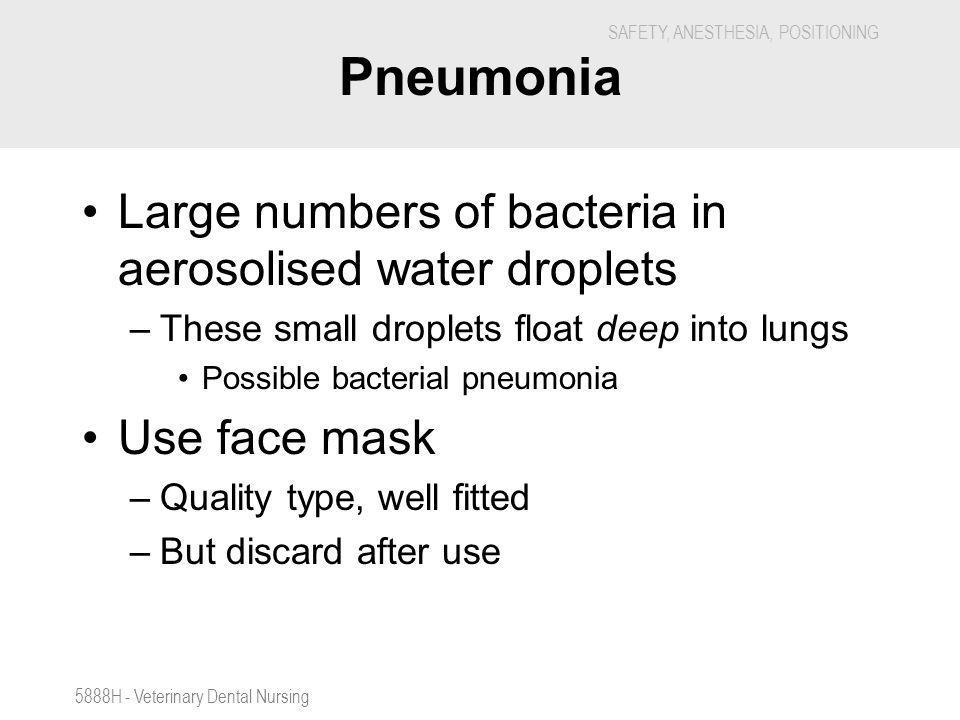 SAFETY, ANESTHESIA, POSITIONING 5888H - Veterinary Dental Nursing Pneumonia Large numbers of bacteria in aerosolised water droplets –These small dropl