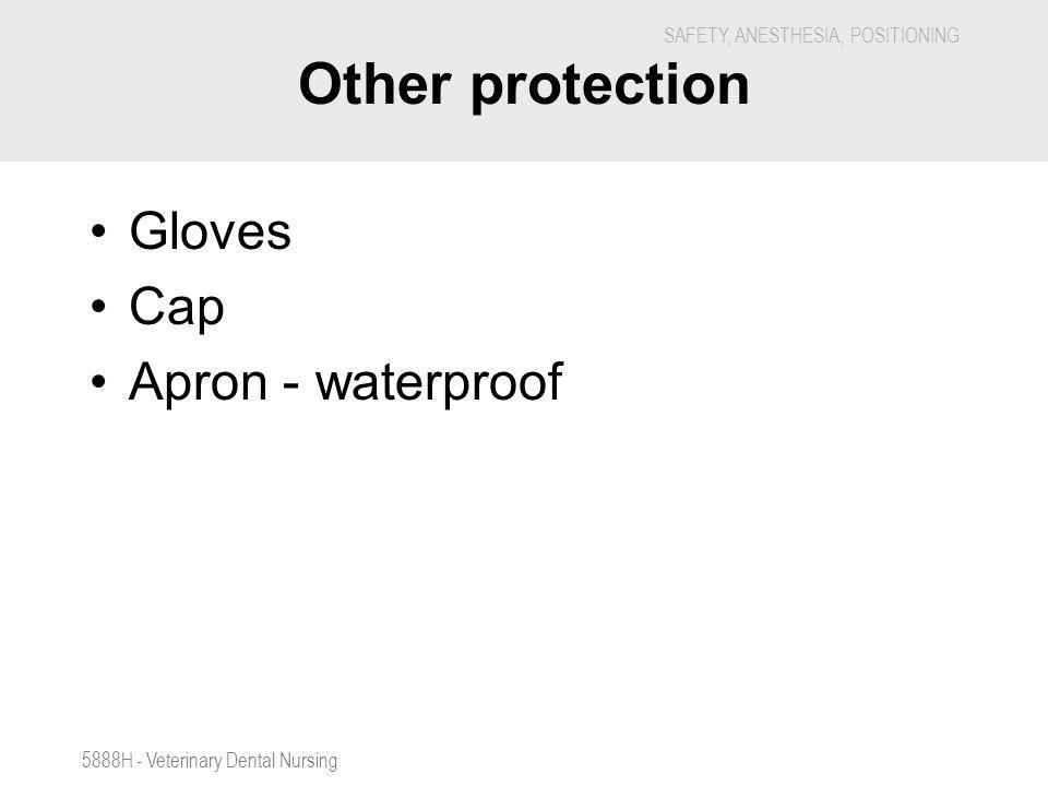 SAFETY, ANESTHESIA, POSITIONING 5888H - Veterinary Dental Nursing Other protection Gloves Cap Apron - waterproof