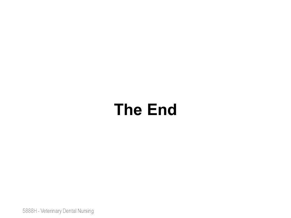 SAFETY, ANESTHESIA, POSITIONING 5888H - Veterinary Dental Nursing The End