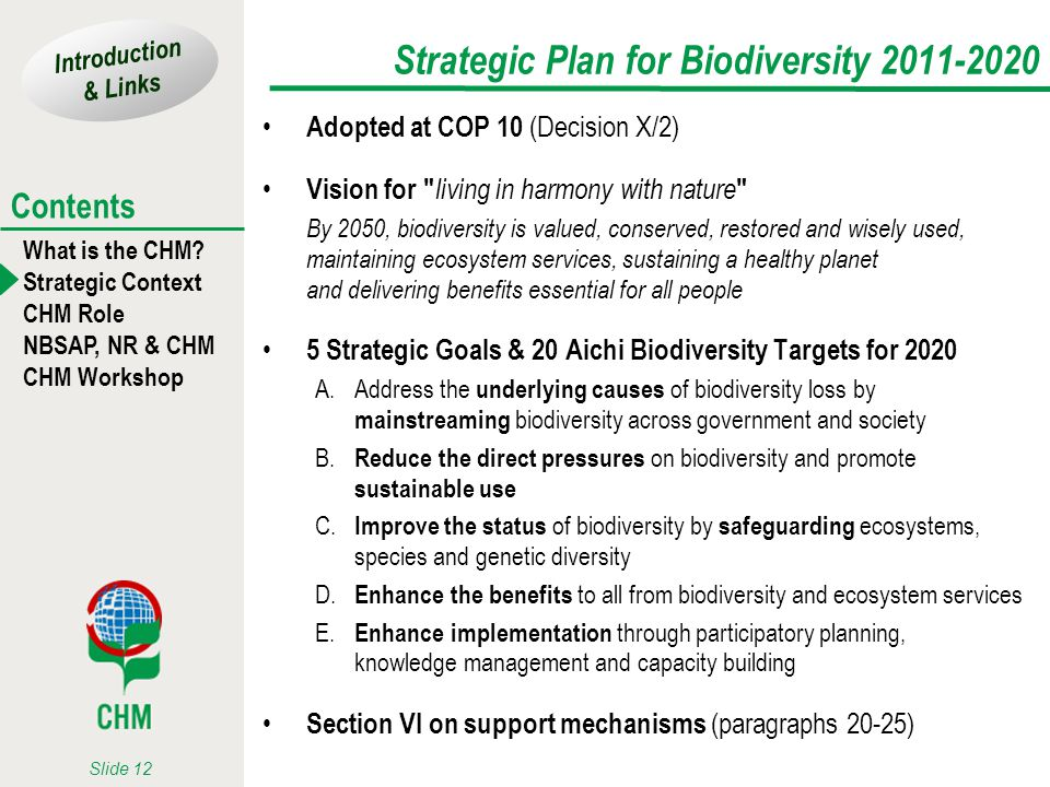Introduction & Links What is the CHM? Strategic Context CHM Role NBSAP, NR & CHM CHM Workshop Contents Slide 12 Strategic Plan for Biodiversity 2011-2