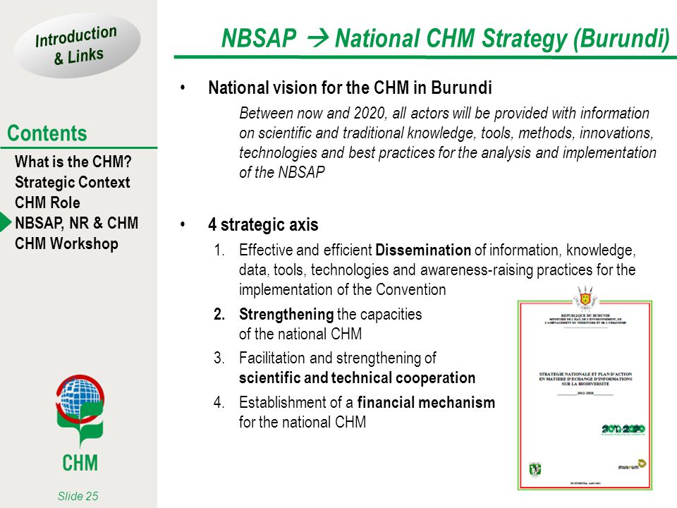 Introduction & Links What is the CHM? Strategic Context CHM Role NBSAP, NR & CHM CHM Workshop Contents Slide 25 NBSAP National CHM Strategy (Burundi)