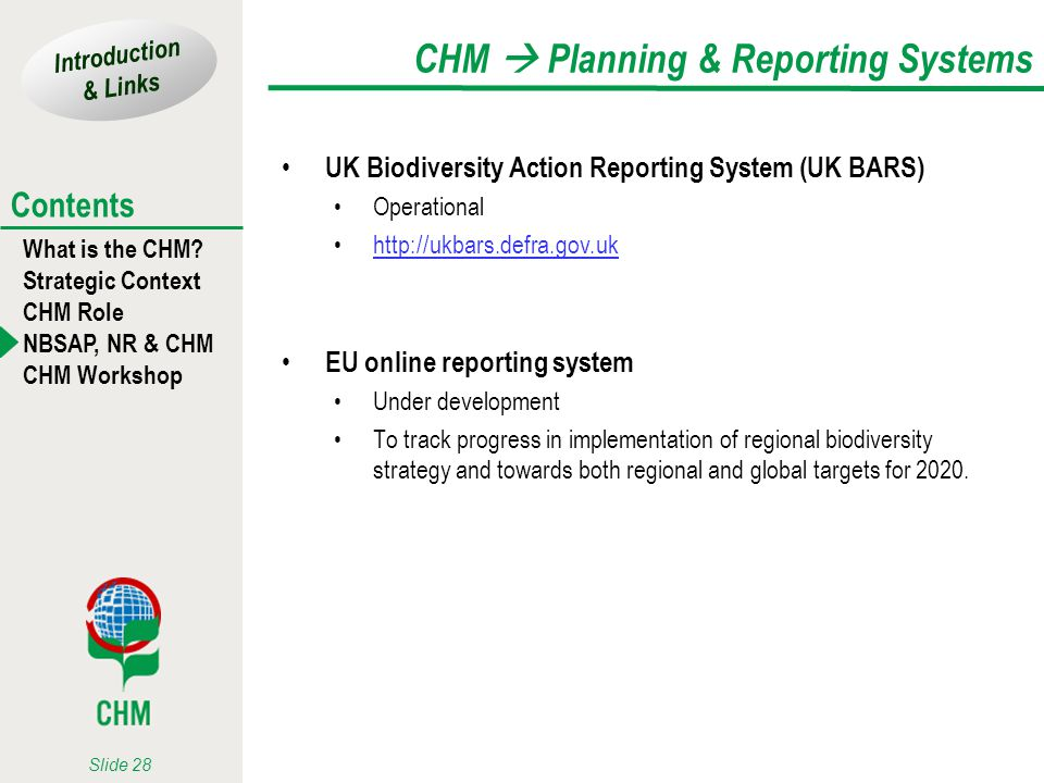 Introduction & Links What is the CHM? Strategic Context CHM Role NBSAP, NR & CHM CHM Workshop Contents Slide 28 CHM Planning & Reporting Systems UK Bi