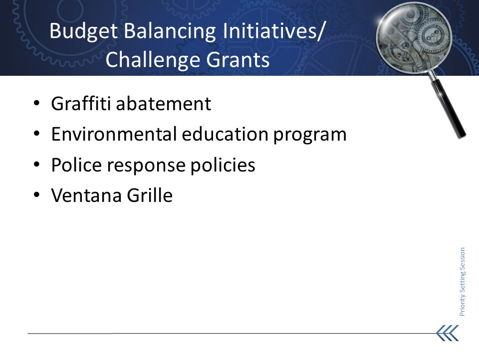 Priority Setting Session Budget Balancing Initiatives/ Challenge Grants Graffiti abatement Environmental education program Police response policies Ventana Grille