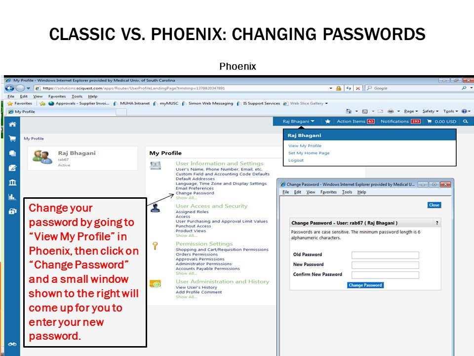 CLASSIC VS. PHOENIX: CHANGING PASSWORDS Phoenix Change your password by going to View My Profile in Phoenix, then click on Change Password and a small