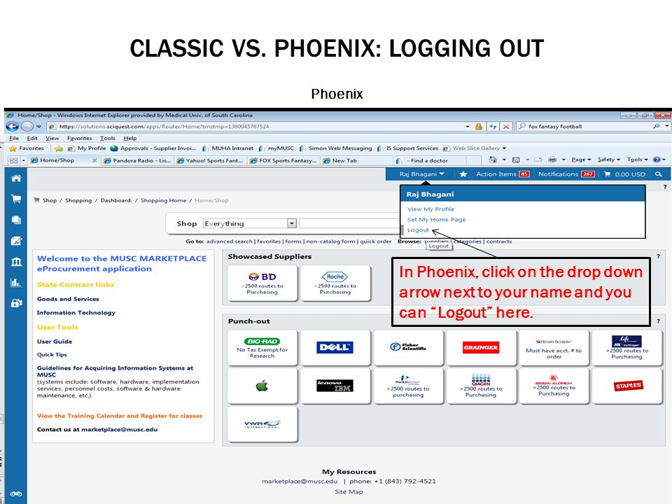 CLASSIC VS. PHOENIX: LOGGING OUT Phoenix In Phoenix, click on the drop down arrow next to your name and you can Logout here.