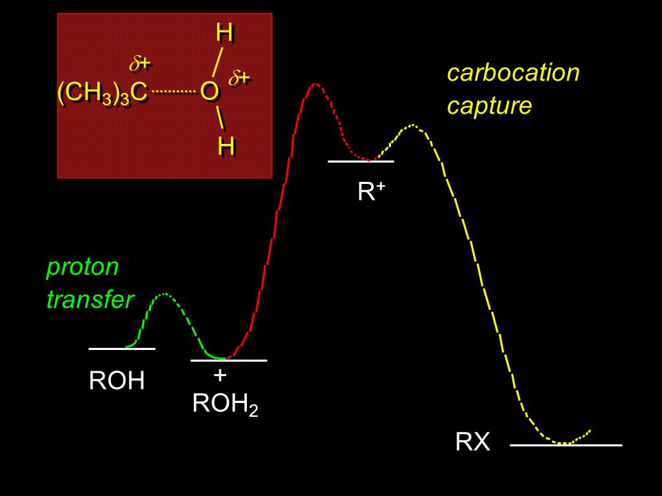 proton transfer ROH ROH 2 + R+R+R+R+ carbocation capture RX (CH 3 ) 3 C + + O O H H H H + +