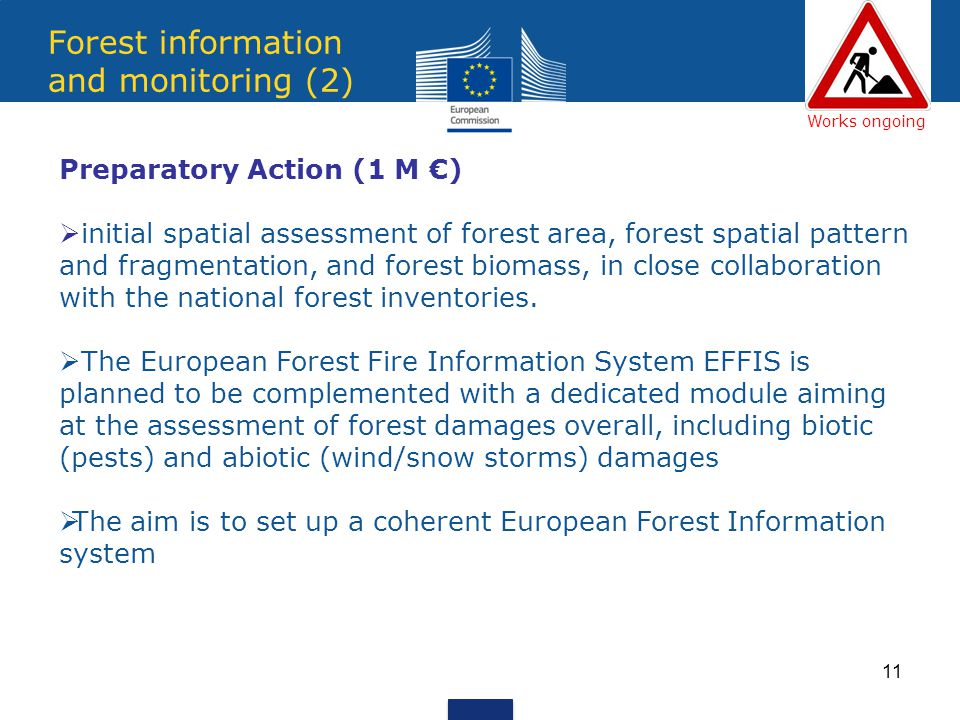 11 Forest information and monitoring (2) Preparatory Action (1 M ) initial spatial assessment of forest area, forest spatial pattern and fragmentation, and forest biomass, in close collaboration with the national forest inventories.