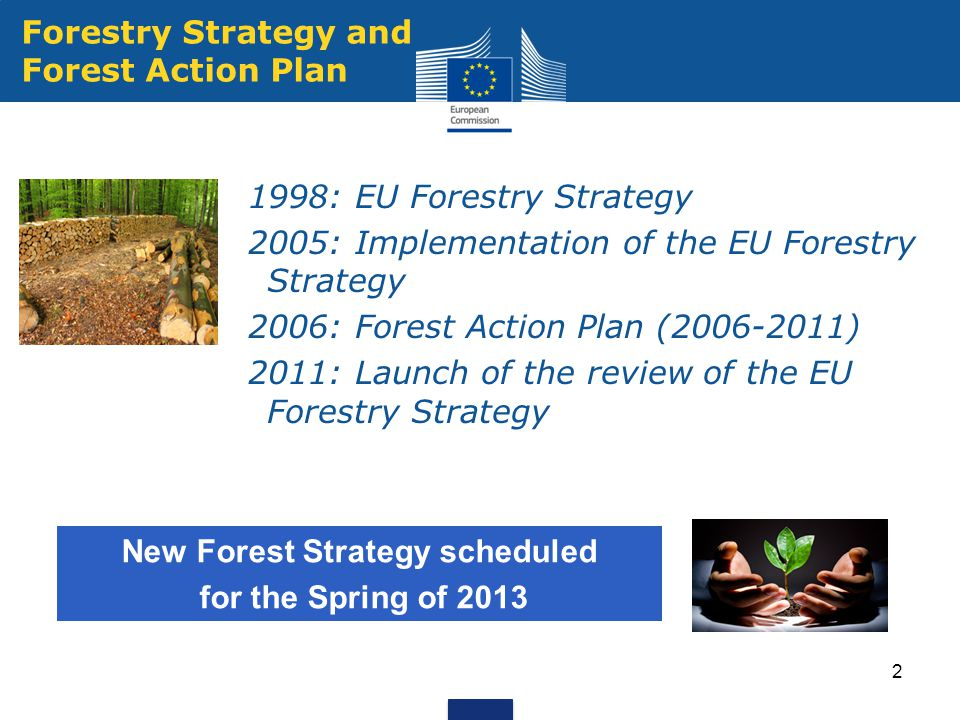 2 Forestry Strategy and Forest Action Plan 1998: EU Forestry Strategy 2005: Implementation of the EU Forestry Strategy 2006: Forest Action Plan (2006-2011) 2011: Launch of the review of the EU Forestry Strategy New Forest Strategy scheduled for the Spring of 2013