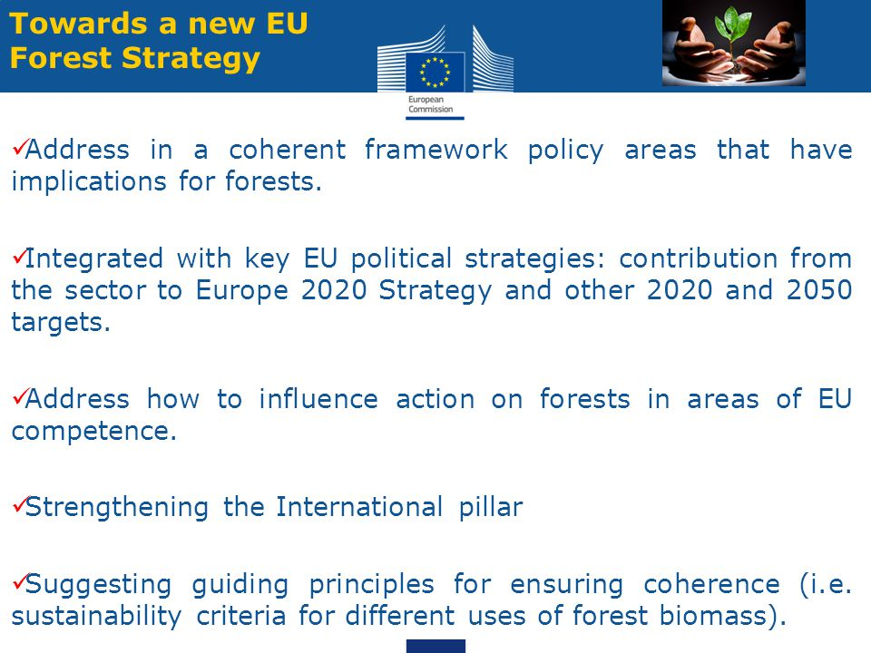 5 Towards a new EU Forest Strategy Address in a coherent framework policy areas that have implications for forests.