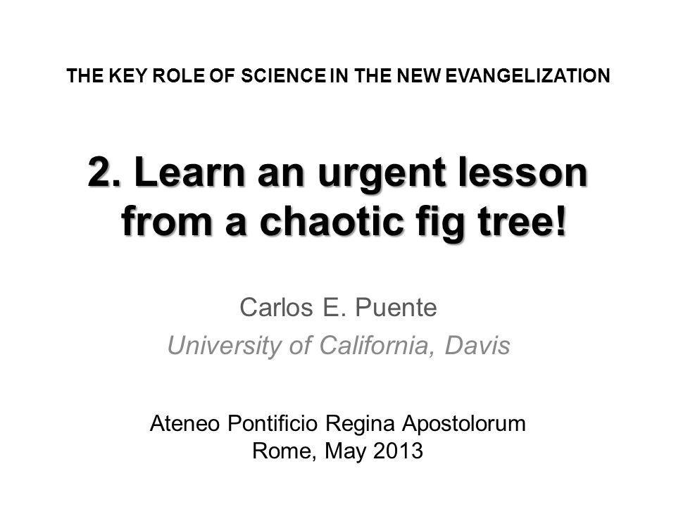 2. Learn an urgent lesson from a chaotic g tree. Carlos E.