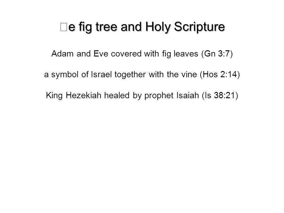 e g tree and Holy Scripture Adam and Eve covered with g leaves (Gn 3:7) a symbol of Israel together with the vine (Hos 2:14) King Hezekiah healed by prophet Isaiah (Is 38:21)